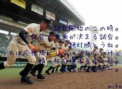 試合開始のこの時。 この試合で未来が決まる試合。 絶対勝とうね。 うちは応援席にしかいられないけど 精一杯応援するからね。 目指せ。日本一。